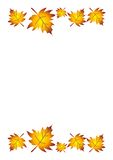 листья падения граници Стоковая Фотография RF