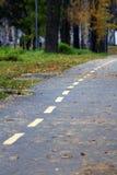 листья падения предпосылки осени искусства цифровые Желтый цвет выходит на сторону дороги леса Стоковые Фото