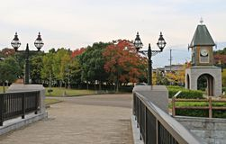 Листья парка осени листопада Стоковые Фотографии RF