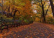 Листья падения осени в Central Park Нью-Йорке Стоковая Фотография RF