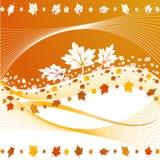 листья падения предпосылки Стоковые Фотографии RF