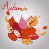 Листья падения с цветом брызгают теплое падение Иллюстрация вектора