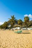 Листья пальмы над роскошным пляжем Стоковое Фото