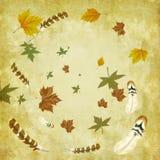 листья пер птицы предпосылки осени Стоковые Фотографии RF
