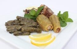 листья покрывают заполненный zucchini лозы Стоковое Изображение RF