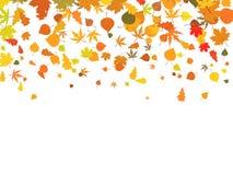 листья предпосылки осени Стоковые Фото