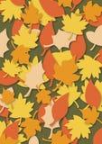 листья предпосылки осени Стоковая Фотография RF