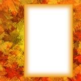 листья рамки осени Стоковое Изображение RF