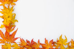 листья рамки осени Стоковая Фотография