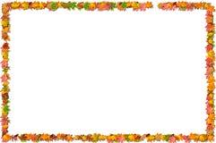 листья рамки падения Стоковые Фотографии RF