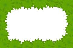 листья рамки цветка Стоковая Фотография