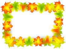 листья рамки иллюстрация штока