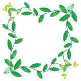 Листья рамки Стоковое Фото