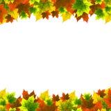 листья рамки иллюстрация вектора