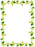 листья рамок Стоковая Фотография
