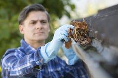Листья расчистки человека от Guttering дома Стоковые Изображения RF