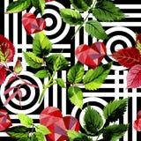 Листья розовой картины в стиле акварели Стоковые Изображения RF