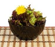 Листья салата стоковое изображение rf