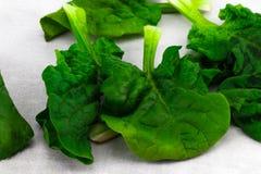 Листья свежего крупного плана шпината на серой предпосылке Стоковые Фото