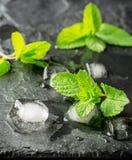 Листья свежей мяты с кубами льда на черноте Стоковое Фото