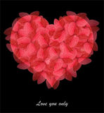 листья сердца сделали красную форму Стоковые Изображения