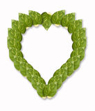 листья сердца Стоковые Изображения RF