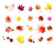 листья собрания осени бесплатная иллюстрация