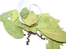 листья стекла залива Стоковые Фото