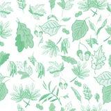 Листья, трава, картина жолудей безшовная иллюстрация штока