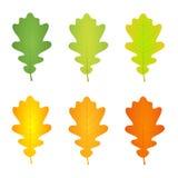 Листья дуба осени бесплатная иллюстрация