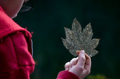 листья удерживания мальчика распадаясь Стоковые Изображения
