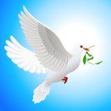 листья удерживания dove Стоковые Фото