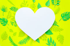 Листья ультрамодного лета тропические Стоковая Фотография