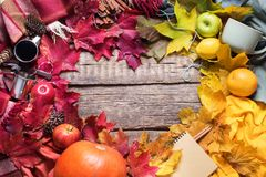 Листья формы сердца падения благодарения красочные Стоковые Фотографии RF