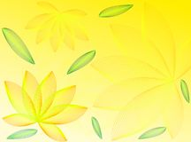 листья цветков Стоковое Изображение
