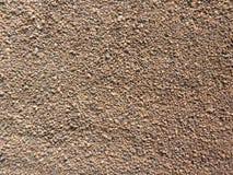 Листья чая цвета Брауна сухие стоковые фотографии rf