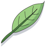 листья шаржа Стоковое Изображение