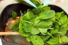 Листья шпината Стоковое фото RF