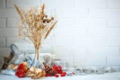Листья, ягоды и конусы осени на деревянном столе крупный план предпосылки осени красит красный цвет листьев плюща померанцовый Стоковое Изображение