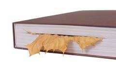 листья bookmark Стоковые Изображения RF