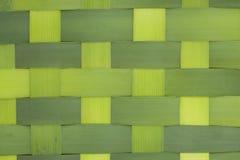 листья cattails Стоковые Фото