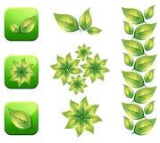 листья eco Стоковая Фотография