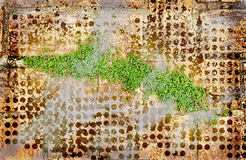 листья grunge искусства зеленые Стоковые Изображения RF