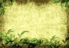 листья grunge предпосылки зеленые иллюстрация вектора