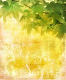 листья grunge предпосылки Стоковые Фотографии RF