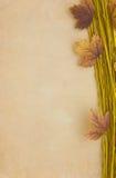 листья grunge предпосылки Стоковое Изображение RF