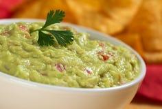 листья guacamole cilantro стоковые изображения rf