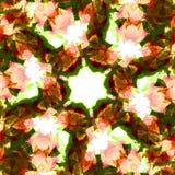 листья kaleidoscope Стоковые Фотографии RF