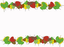 Листья Pipal Стоковые Изображения