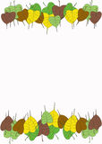 Листья Pipal Стоковая Фотография RF